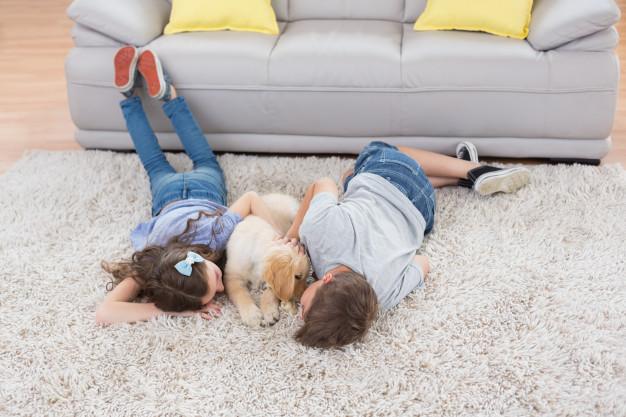 alfombras en bogota